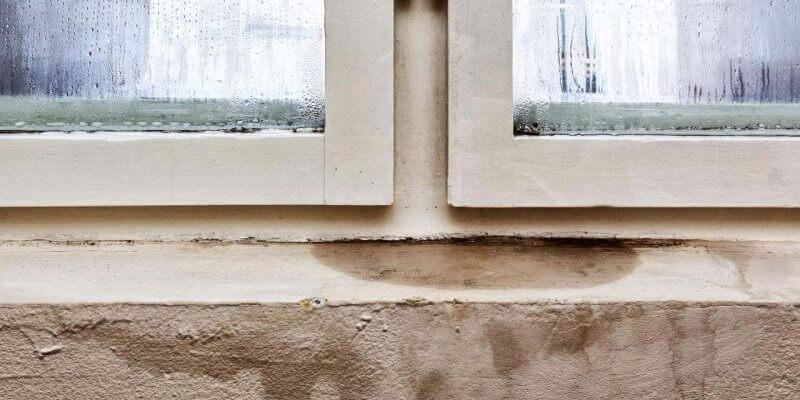 Bautrocknung Nrw Warum Der Keller Im Sommer Feucht Wird